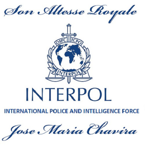 interpol-global-security-head