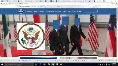 screenshot from whitehouse.gov taken June 30th 0300 Hours