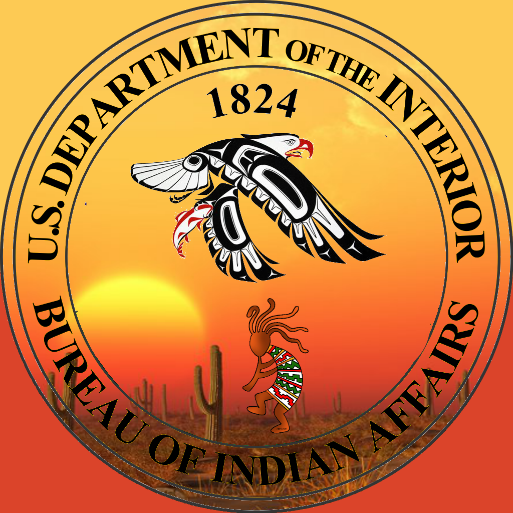 Published on feb 25 2017 04 22 reorganizing in the - United states department of the interior bureau of indian affairs ...